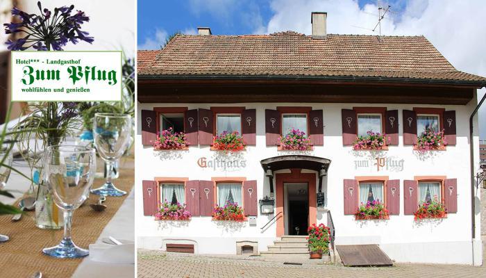 Hotel***Landgasthof zum Pflug Logo